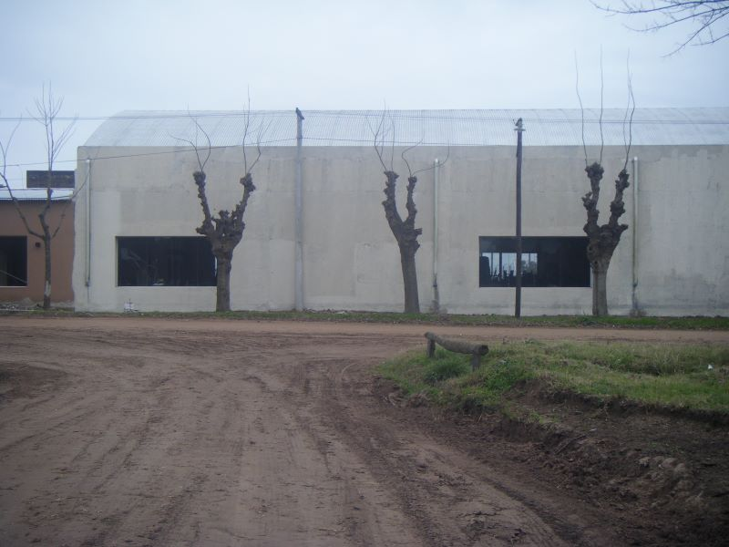 2007_08170006